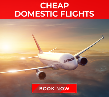 Domestic Flights BookOtrip