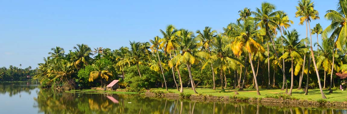 Taste Of Kerala Tour Packages
