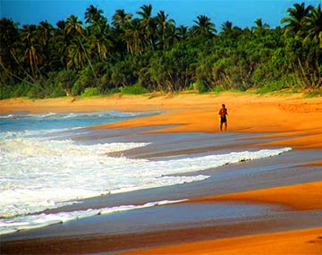 Sri Lanka Honeymoon Package BookOtrip