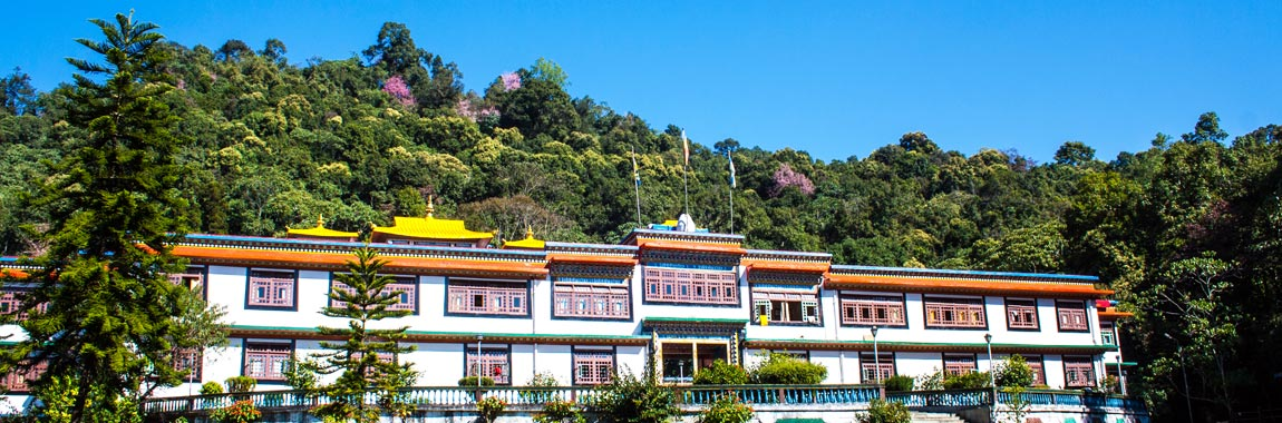 North East Gangtok Tour Packages